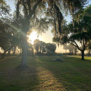 backyard yoga unwind